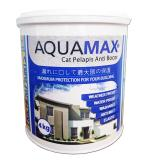 Waterproofing Paint AQUAMAX WATERPROOFING